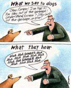 far-side-what-dogs-hear